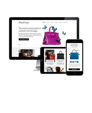 New Bags of Luxury Website Launch